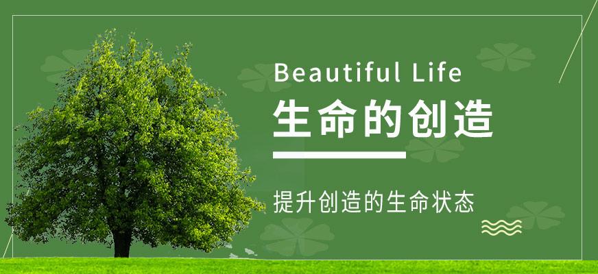 苏州新励成生命创造课程